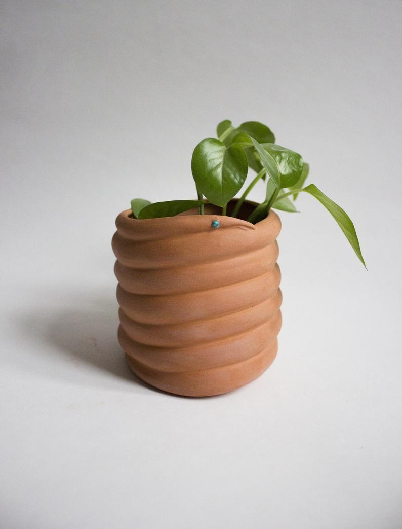 Terracotta Snake Planter