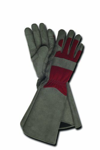 Magid Terra Collection Professional Rose Gardening Gloves Womens Medium     Check Out This Great Product.