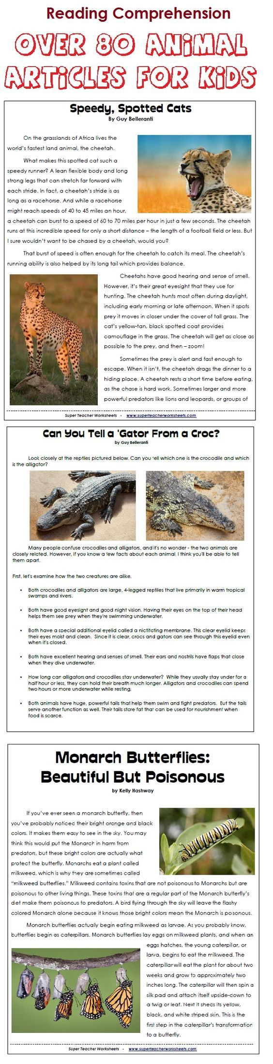 Download 80+ printable animal articles, with reading ...