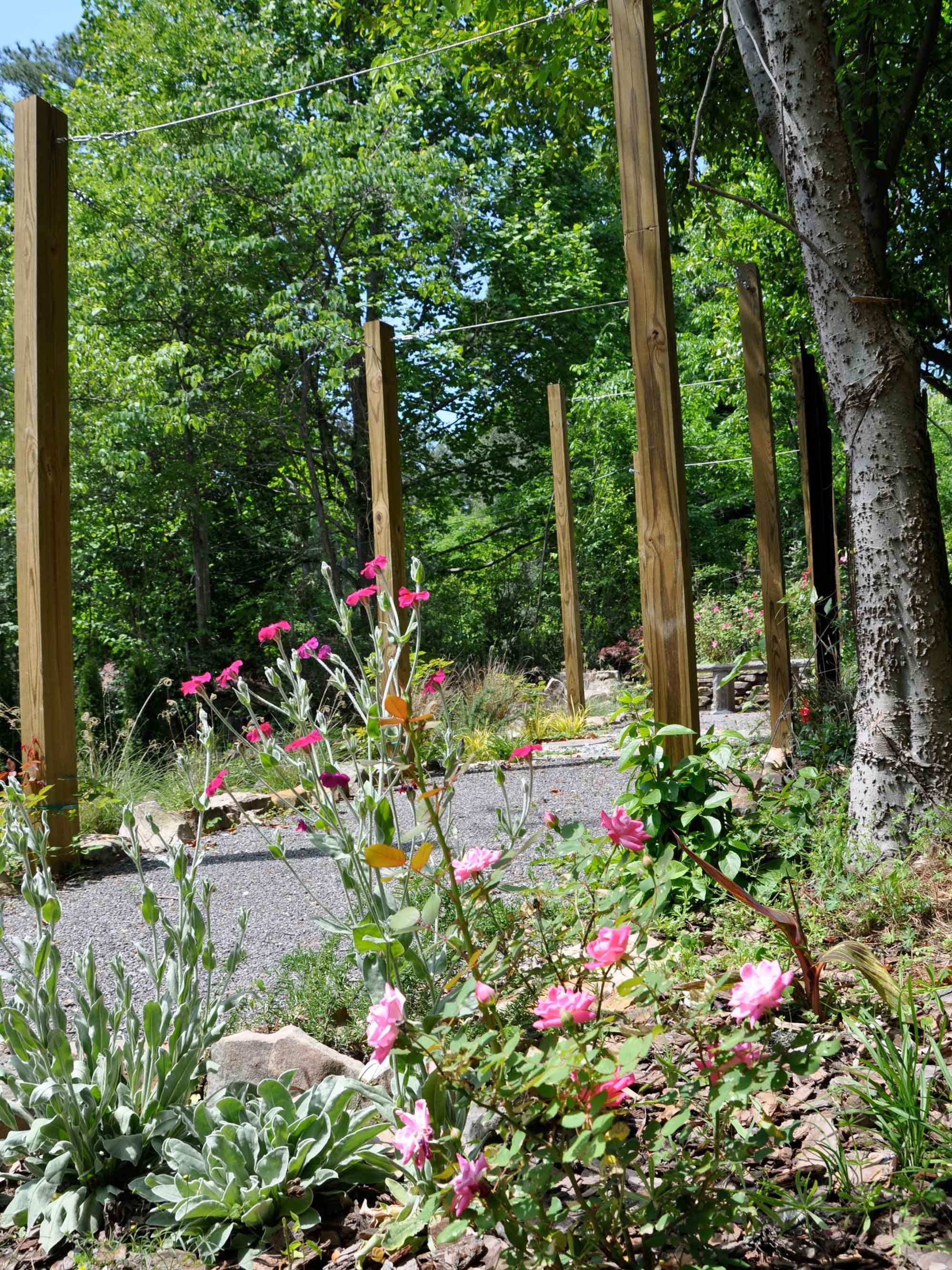 Catherine Sims Garden Homewood Al Live Pinterest