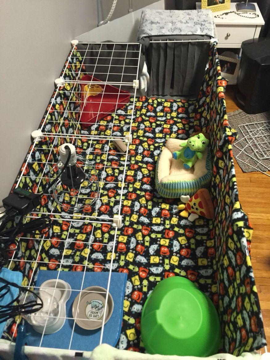 diy hedgehog cage plans