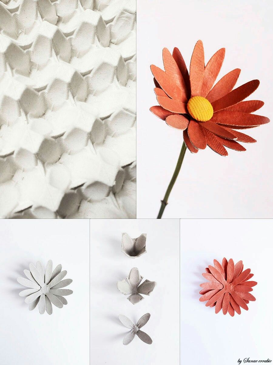 Pin By Carol Decker On Egg Cartons Pinterest Egg Cartons And Crafty