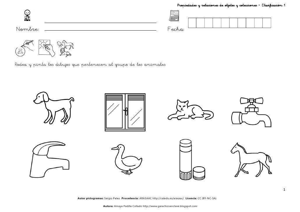 Clasificación 1 by Amaya Collado via slideshare