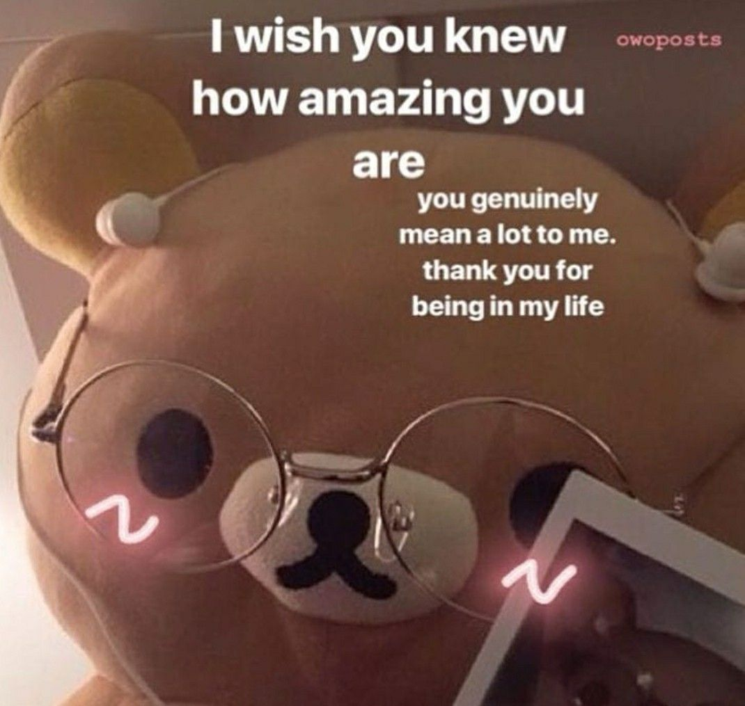 Pin By Angelica Tobing On Wholesome Pictures Wholesome Memes Love You Meme