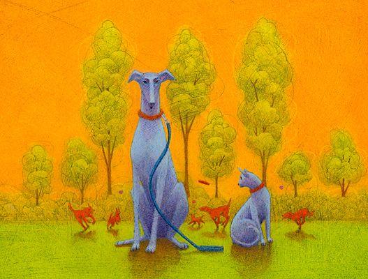 Small Animal Anatomy Illustration Cathy Gendron Pinterest