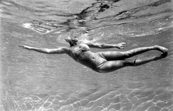 I Love Summer | Tarreyn Land: I Love Summer