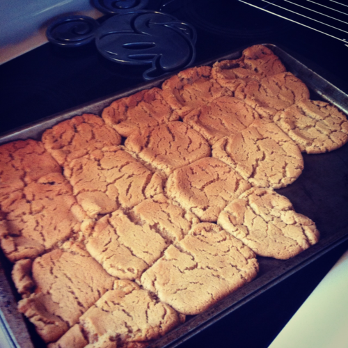 Healthy Peanut Butter cookies! Only 36 calories per cookie! Ingredients: 1 Cup Peanut butter 1 Cup Sugar 1 TSP baking soda 1 egg Mix the peanut butter and sugar first then add in the egg and baking soda. Bake for 10 minutes on 350 degrees. They're delicious!