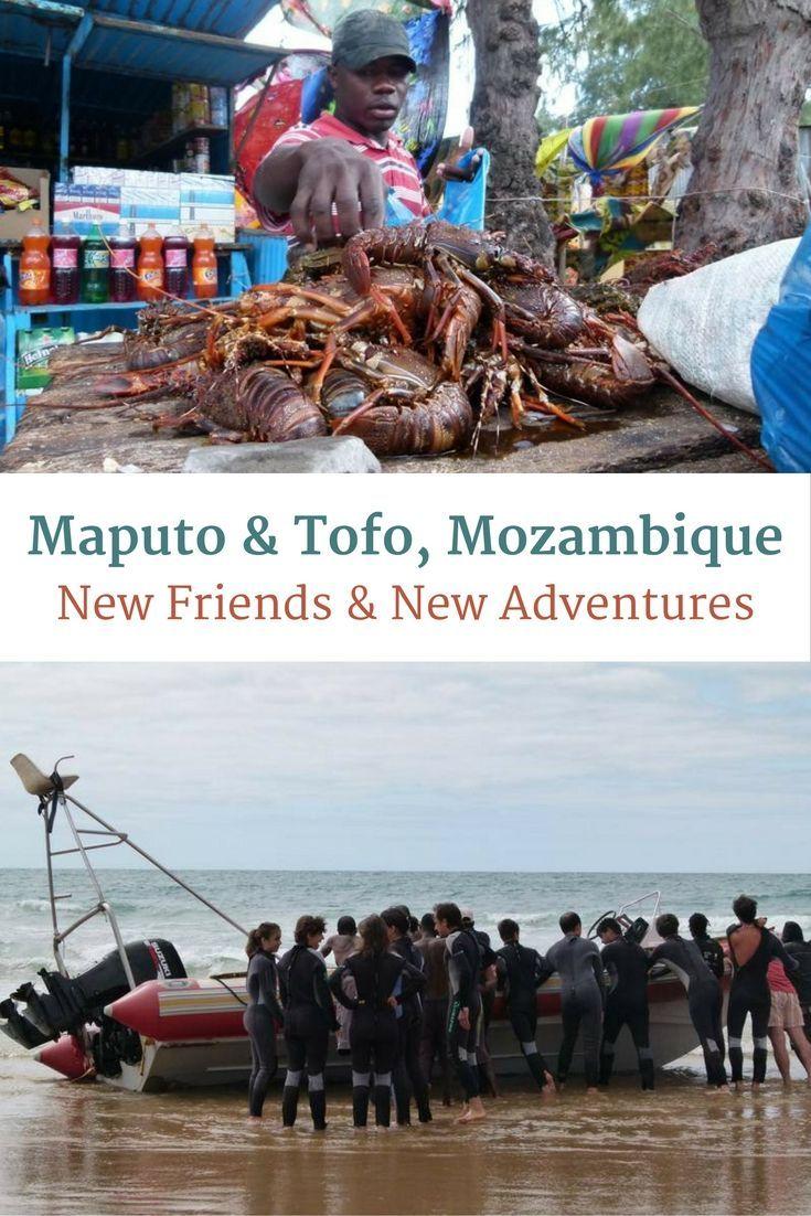 Maputo Tofo Mozambique New Friends New Adventures Goats On The Road Maputo New Adventures Mozambique