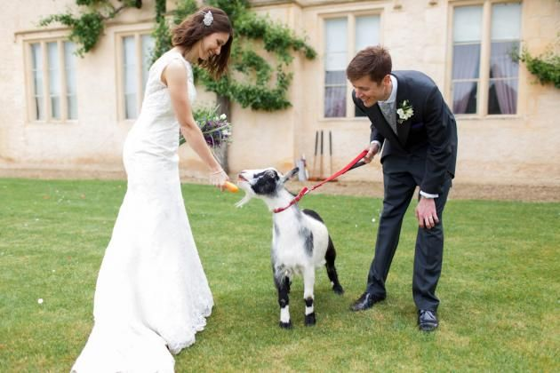 Cogge Oxfordshire Cotswold Barn Wedding With Farm Animals