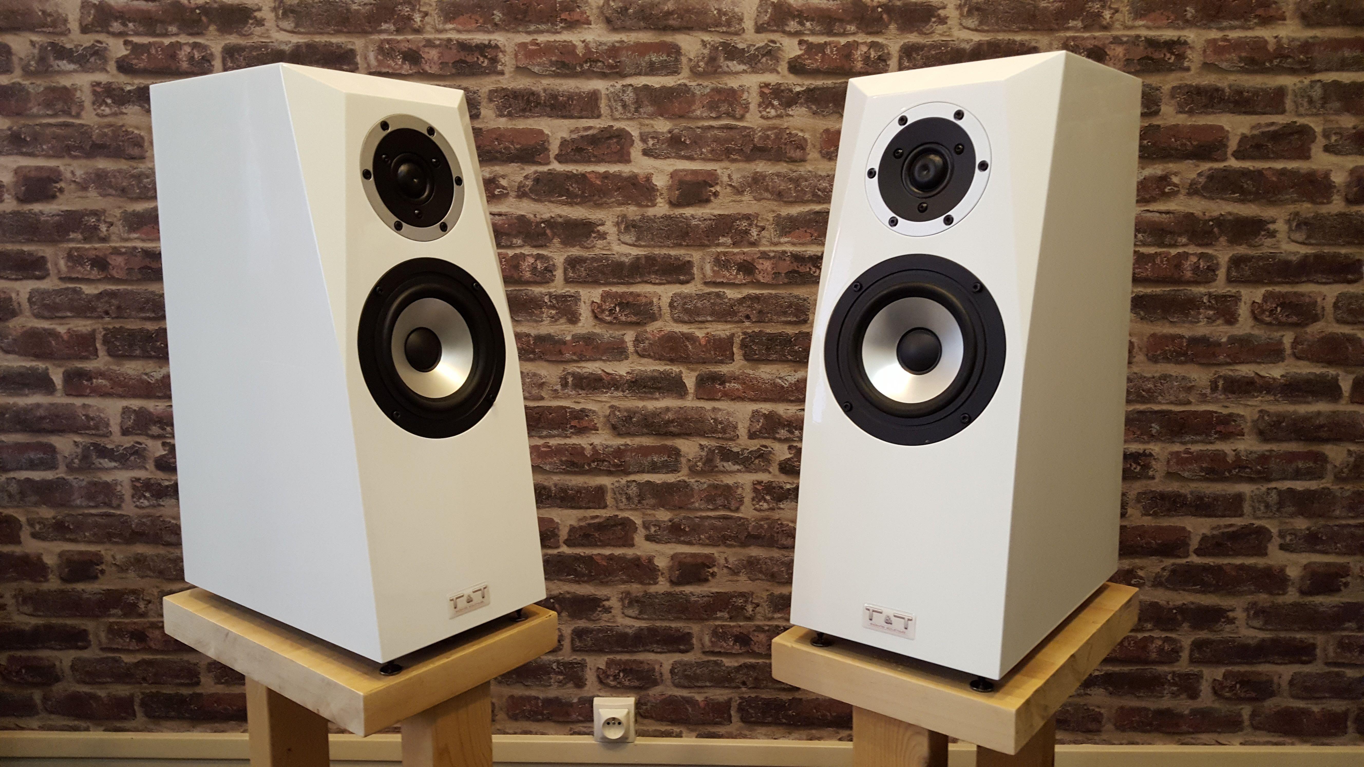 enceintes bibliotheque high end haut parleurs visaton sb acoustics composants haut de gamme floor standing speakers hifi monitor speakers
