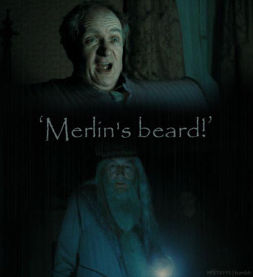 Merlin S Beard Harry Potter Harry Potter Quotes Harry Potter Series
