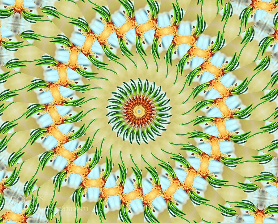 Yellow Onion Sprouts kaleidoscope by hz536n