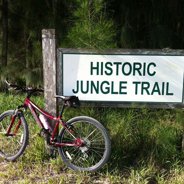 Places To Visit In Florida In April: Vero Beachs Historic Jungle Trail.
