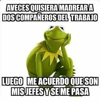 Borracho Y Loco Rick Y Morty Frases De Rick Y Morty Rick Y