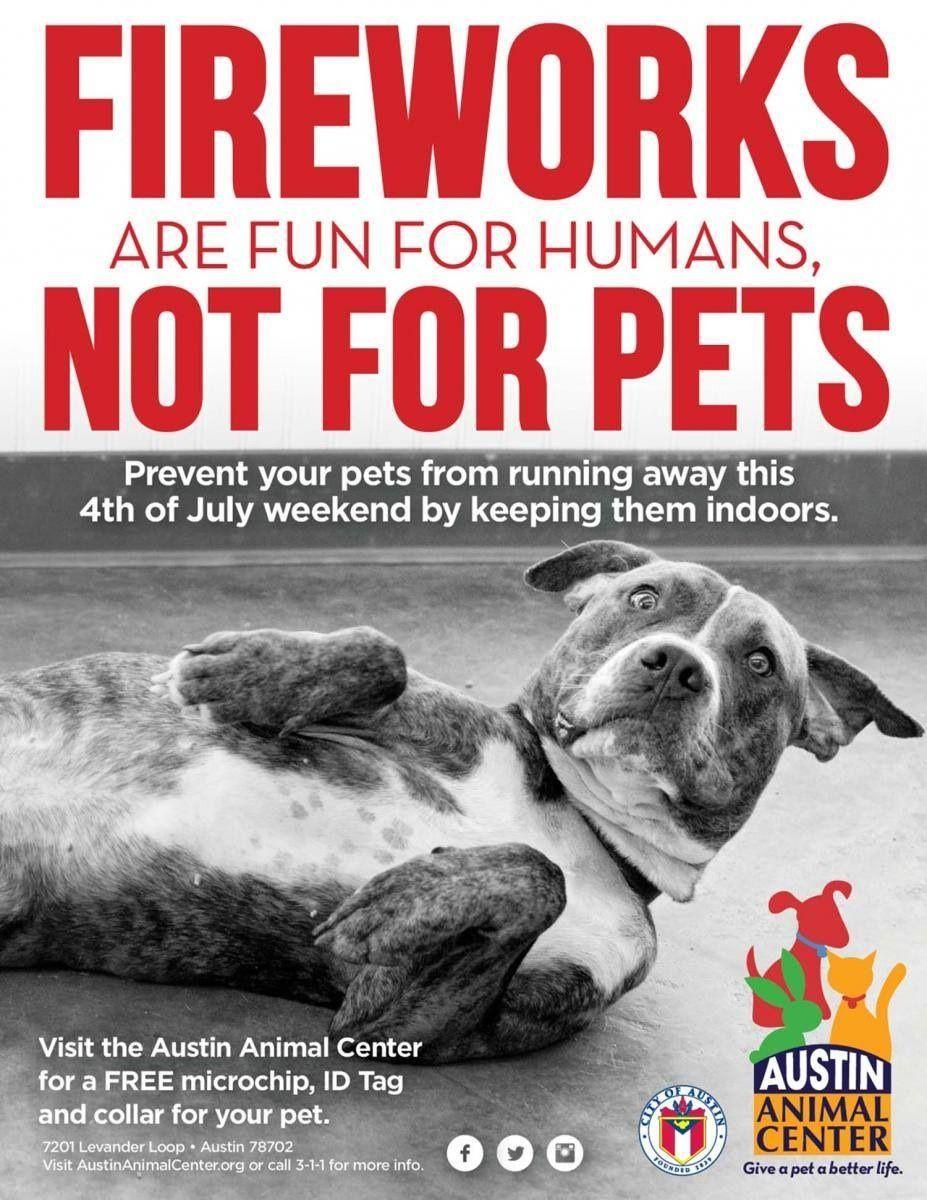 Friendly reminder losing a pet your pet pets