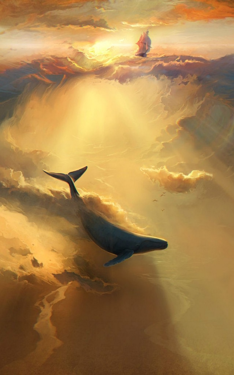 Скачать 800x1280 акула, дельфин, море, арт, подводный мир обои, картинки samsung galaxy note gt-n7000, meizu mx2