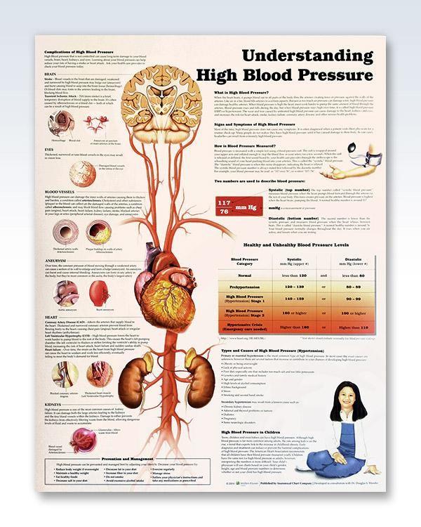 Understanding High Blood Pressure 20x26 Nursing By Sheree Booth