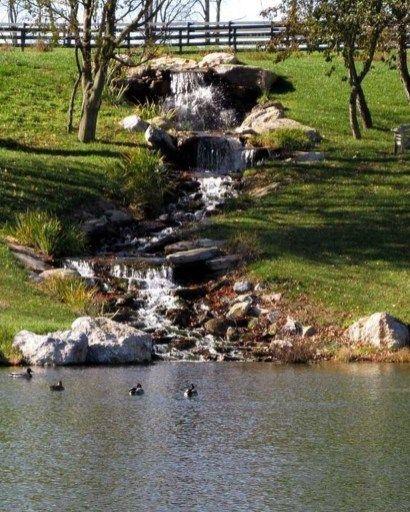 20+ Modern Diy Garden Pond Waterfall Ideas For Backyard