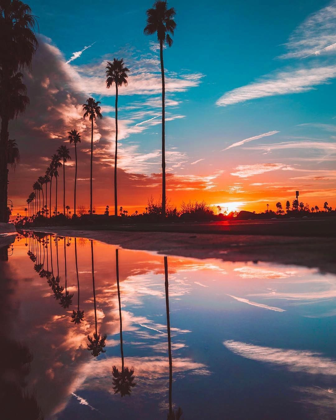 Palm Trees Make Me Happy California Reflections By Mcgeephotografy Nature Photography Sunset Photos Sunset