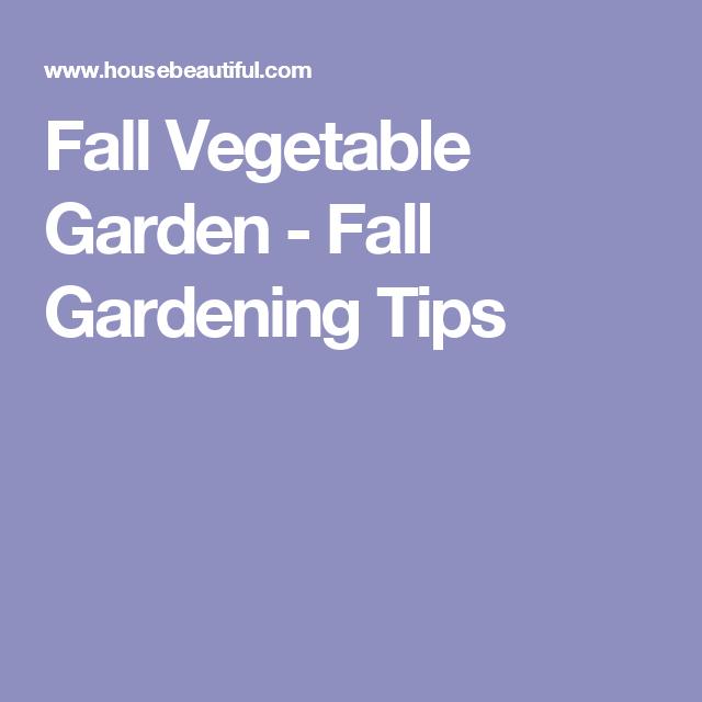 Fall Vegetable Garden - Fall Gardening Tips