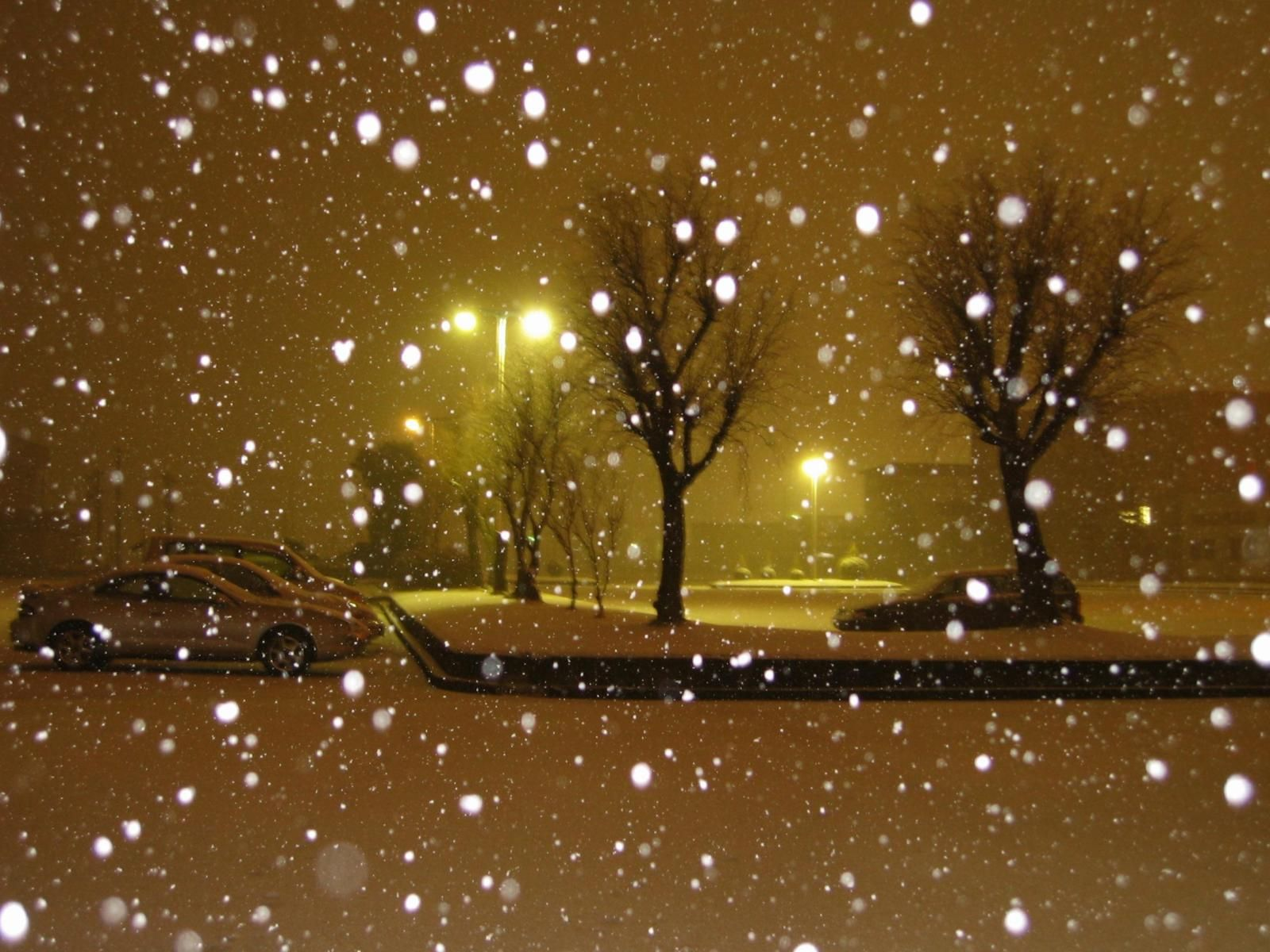 Winter Night Backgrounds Group (63+)