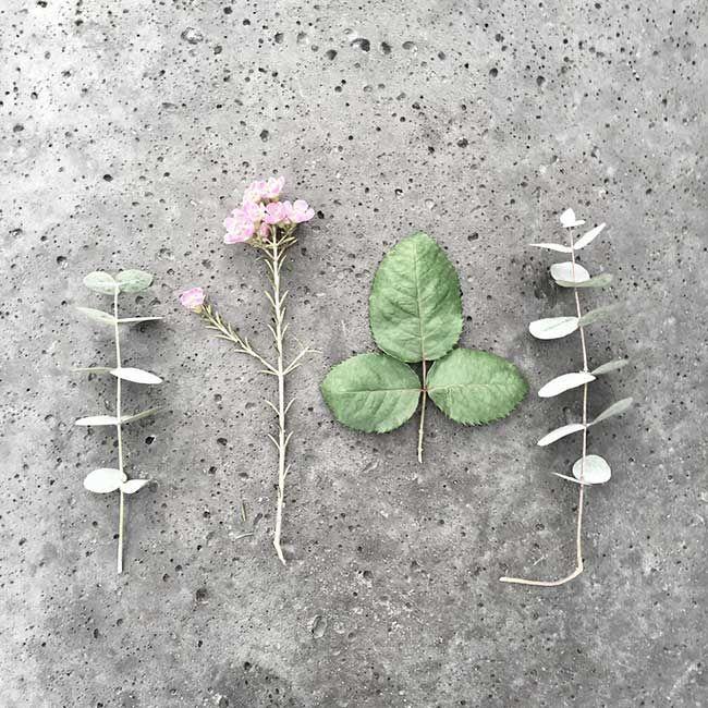 bloomon-beeldsteil-blog-instagram