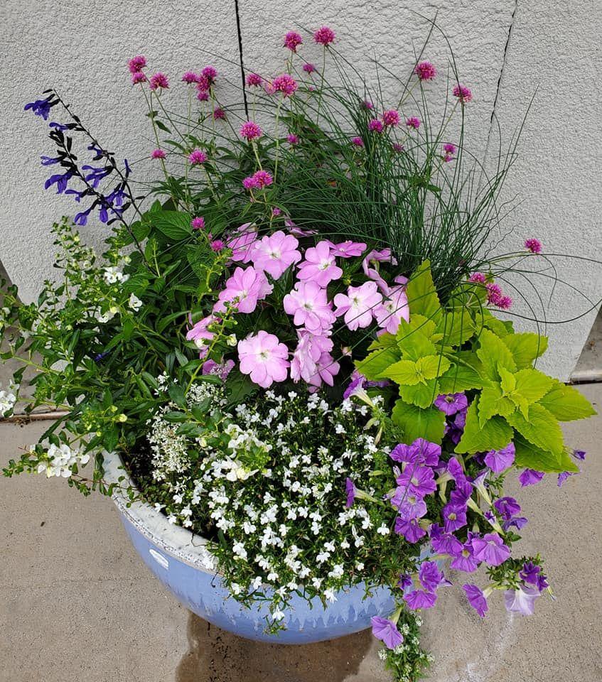 Container Garden Container Gardening Pot Designs Diamond Frost