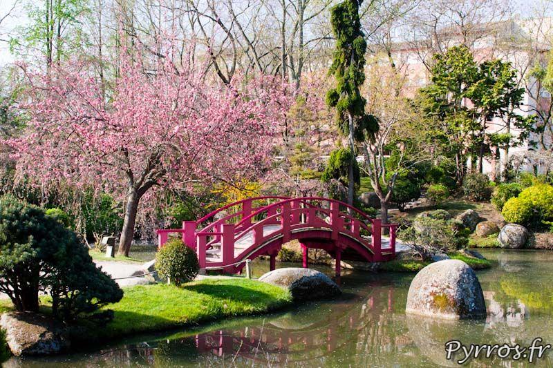 Jardin Japonais De Toulouse Jardin Japonais Jardin Zen Jardins
