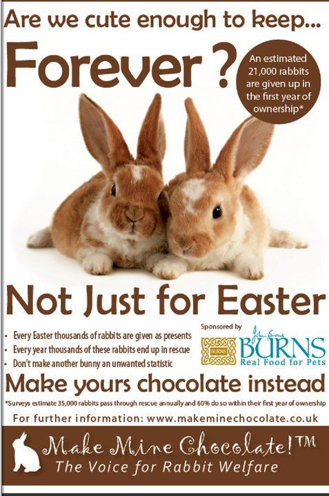 Flat bonnie the bunny says real buns are not easter gifts explore easter gift easter bunny and more negle Choice Image