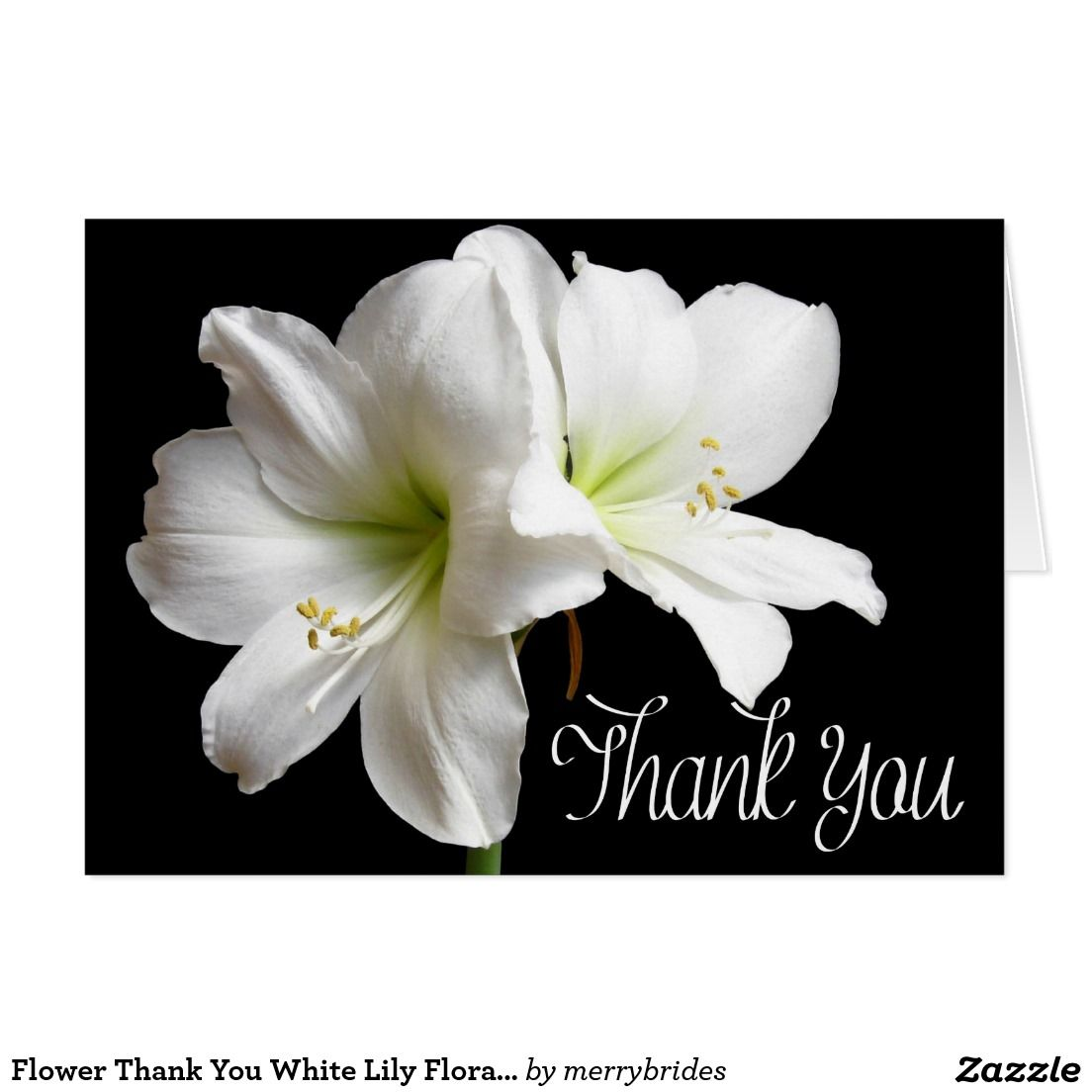 Flower thank you white lily floral black card black and white love white lilies flower greeting card on black izmirmasajfo