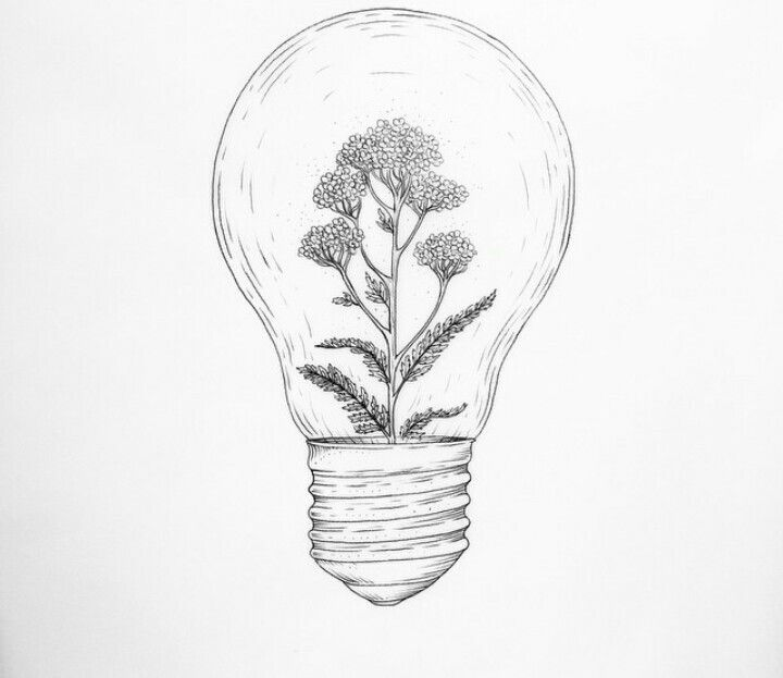 Pinterest Roseclairdelune Art Tumblr Drawings