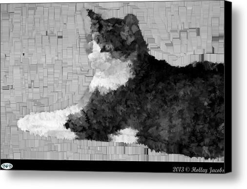 Shooting Star Black And White Canvas Print / Canvas Art By Holley Jacobs