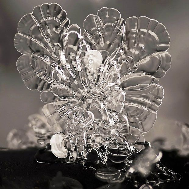 Andrew Osokin's macro photographs of snowflakes and ice formations.