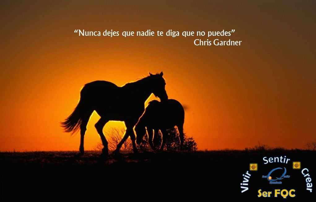 #fondos #quotes #frases