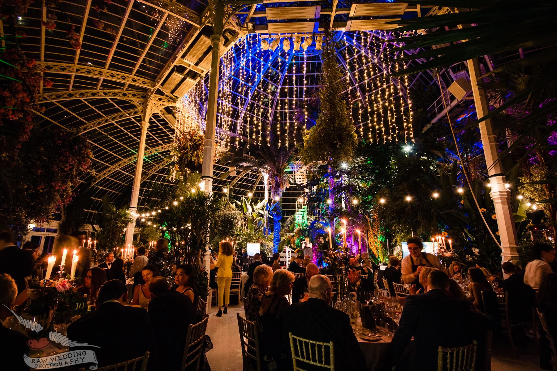 Private Dinner at Sefton Park Palm House - Charity Dinner for the Henry Yates Thompson Fund #seftonpark #seftonpalmhouse #privatedinner #charitydinner #liverpoolvenue