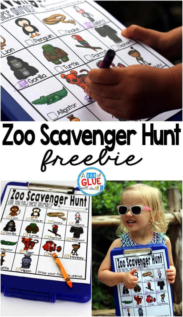 Zoo Scavenger Hunt Freebie Zoo scavenger hunts, Zoo