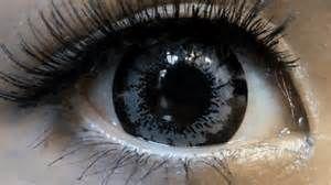 Resultados de la búsqueda de imágenes: Universal Eyes - Yahoo Search