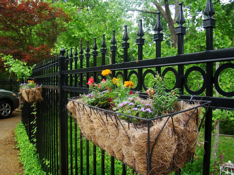 Fragrance In The Garden With Images Garden Fencing Fence