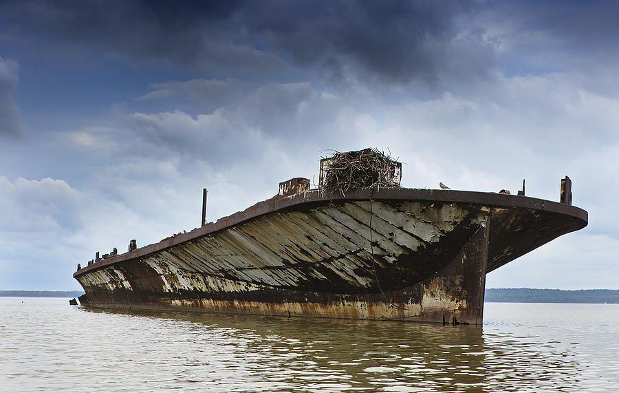 The Ghost Fleet of Mallows Bay.