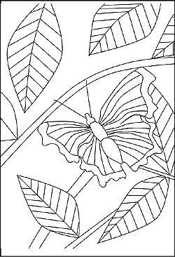 schmetterling - window color bild mit bildern   malvorlagen tiere, malvorlagen, ausmalbilder