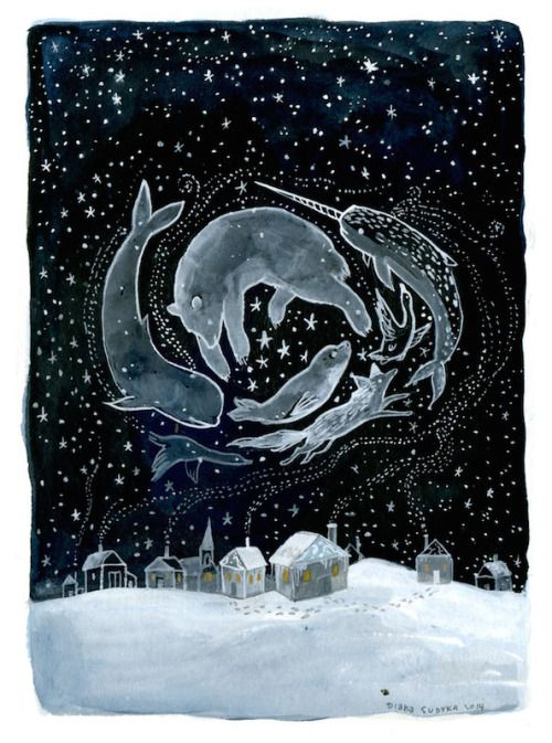 "campsis:DIANA SUDYKA ""Arctic Night"""