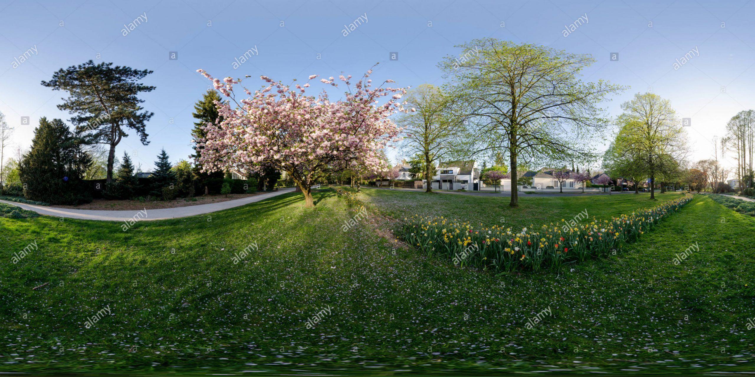 Bunter Garten Monchengladbach Garten Botanischer Garten Garten Ideen