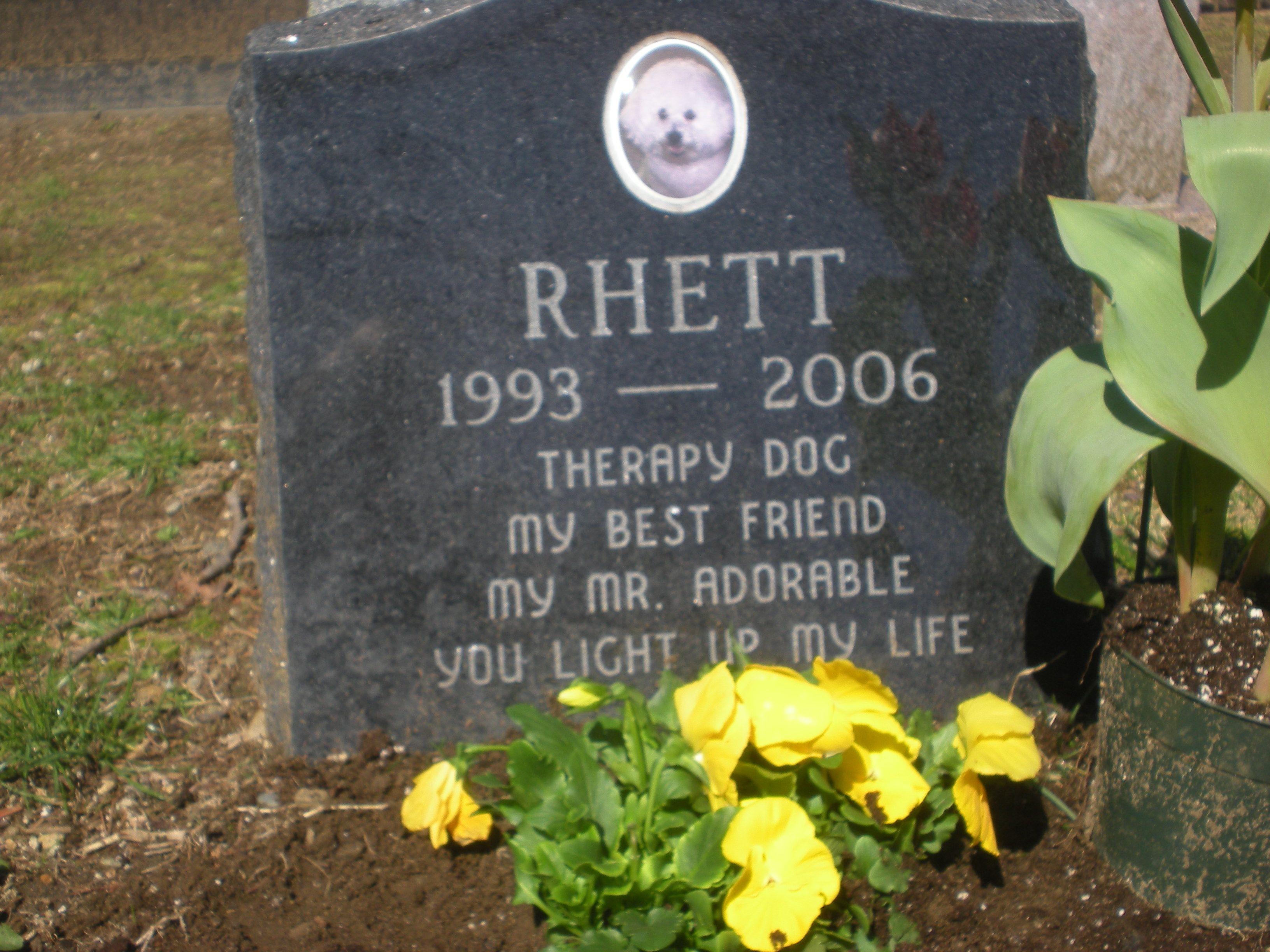 54 best pet cemeteries images on pinterest graveyards cemetery