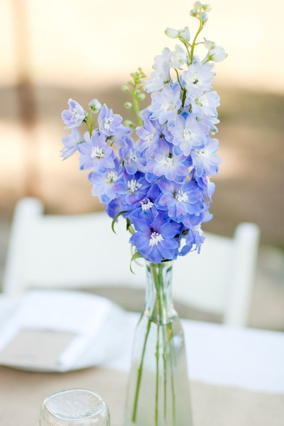 Delphinium Wedding Flowers Blue Wedding Centerpieces Blue Wedding Flowers Blue Flower Centerpieces
