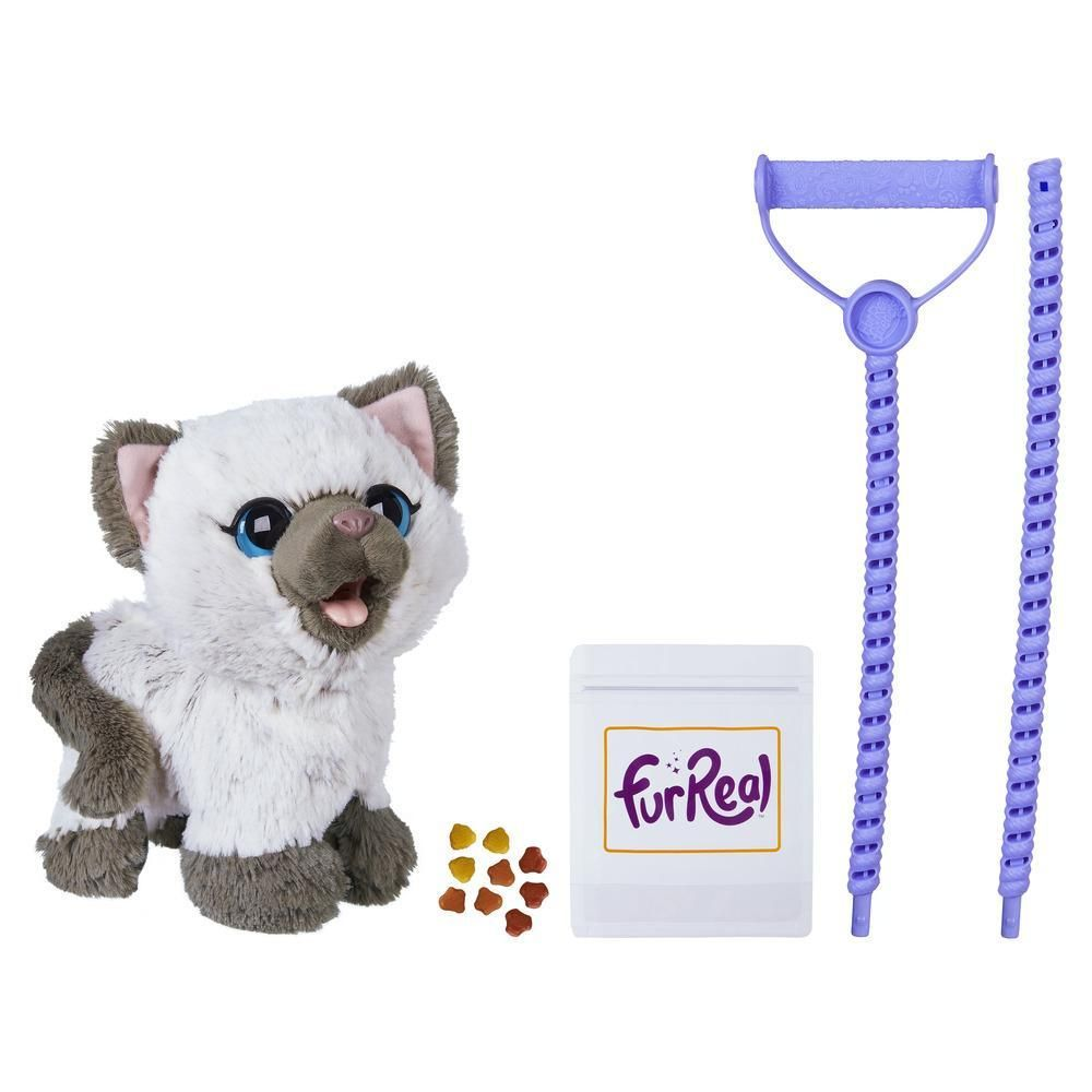 Image For From Hasbrotoyshop Fur Real Friends Best Kitten Toys Kitten Toys