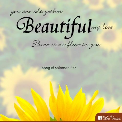 Beautiful Bible Quotes Inspirational Daily Inspiration Quotes