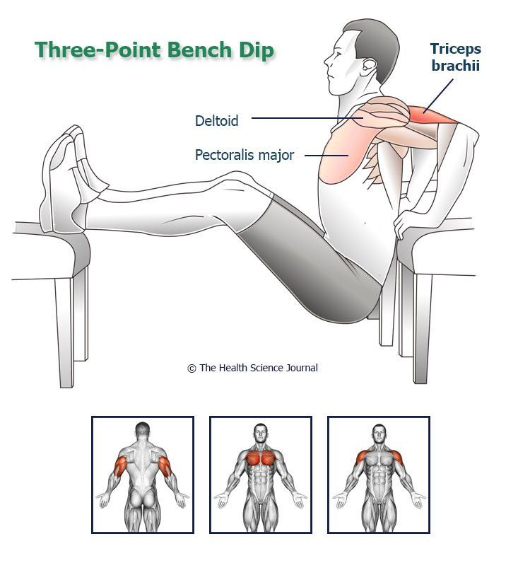 Bodyweight Tricep Exercises And Bodyweight Bicep Exercises How To