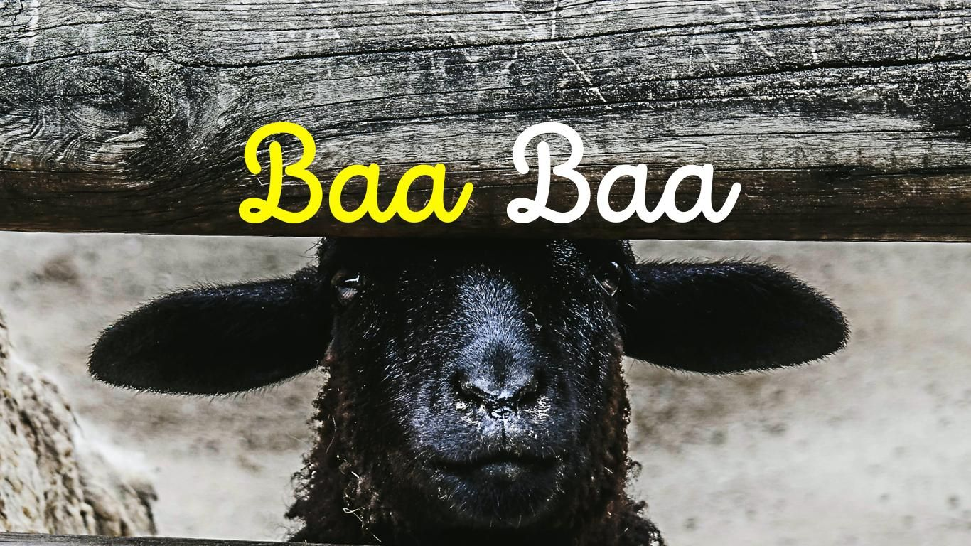 Want to know more? We've investigated the story behind Baa Baa Black Sheep🐑 and you my be surprised at what we found out. Visit the Soundbops Blog., and we'll even show you how to play it!⁠ ⁠ #nurseryrhyme #musiceducation #musiced #readmusic #musiclessons #musicalinstrument #musictheory #kidsmusic #musicalinstruments #musicforkids #childrensmusic #learnmusic #musickids #musiclessonsforkids #childrenmusic