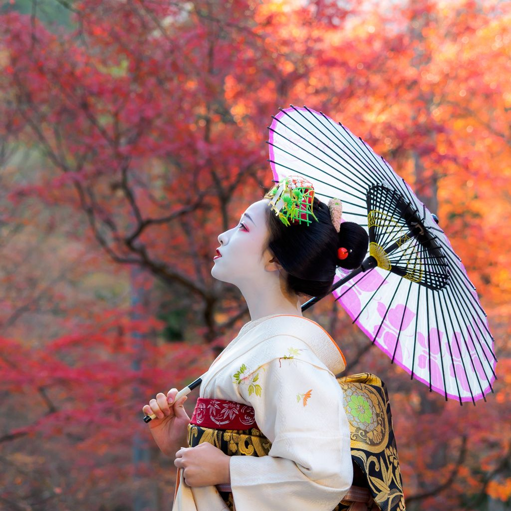 舞妓 Maiko まめ藤 Mamefuji 祇園甲部 Kyoto Japan Jap 243 N Pinterest