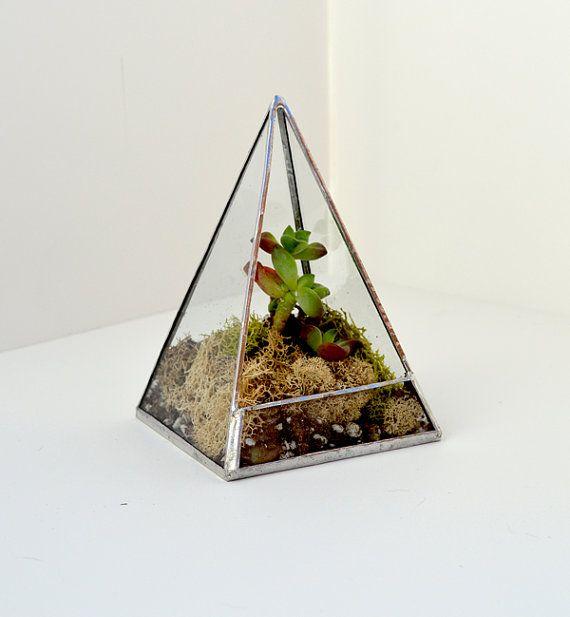 Glass Terrarium - Square Pyramid - Moss Terrarium - Succulent Terrarium